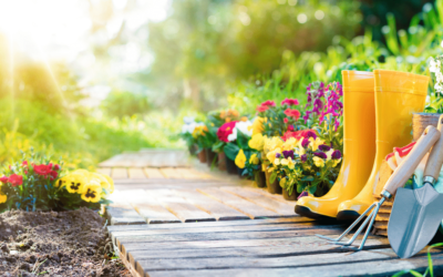10 Tips To Keep You Safe While Gardening